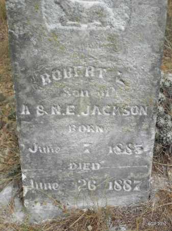 JACKSON, ROBERT  L. - Faulkner County, Arkansas | ROBERT  L. JACKSON - Arkansas Gravestone Photos