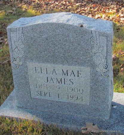 JAMES, ELLA MAE - Faulkner County, Arkansas | ELLA MAE JAMES - Arkansas Gravestone Photos