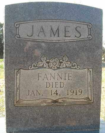 "JAMES, FRANCES ""FANNIE"" - Faulkner County, Arkansas 