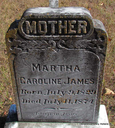 JAMES, MARTHA CAROLINE - Faulkner County, Arkansas | MARTHA CAROLINE JAMES - Arkansas Gravestone Photos