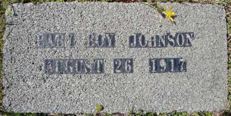 JOHNSON, BABY BOY - Faulkner County, Arkansas | BABY BOY JOHNSON - Arkansas Gravestone Photos