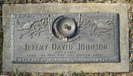 JOHNSON, JEREMY DAVID - Faulkner County, Arkansas | JEREMY DAVID JOHNSON - Arkansas Gravestone Photos