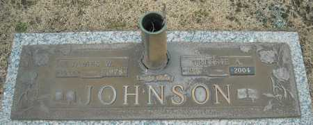 JOHNSON, JAMES W. - Faulkner County, Arkansas | JAMES W. JOHNSON - Arkansas Gravestone Photos