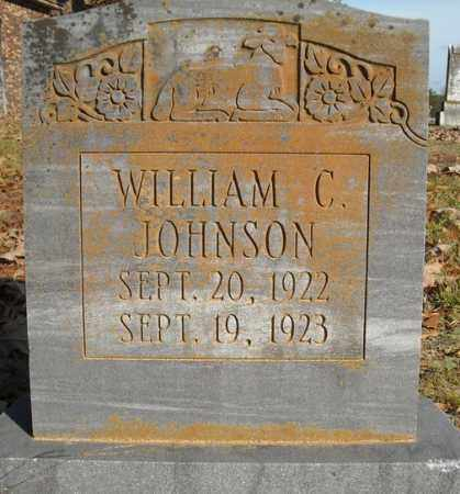 JOHNSON, WILLIAM C. - Faulkner County, Arkansas | WILLIAM C. JOHNSON - Arkansas Gravestone Photos