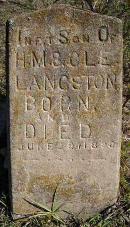 LANGSTON, INFANT SON - Faulkner County, Arkansas | INFANT SON LANGSTON - Arkansas Gravestone Photos