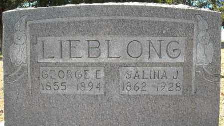 LIEBLONG, SALINA JANE - Faulkner County, Arkansas | SALINA JANE LIEBLONG - Arkansas Gravestone Photos