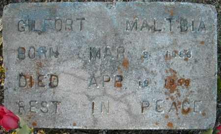 MALTBIA, GILFORT - Faulkner County, Arkansas | GILFORT MALTBIA - Arkansas Gravestone Photos