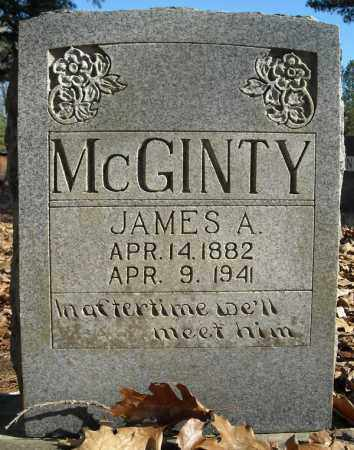 MCGINTY, JAMES A. - Faulkner County, Arkansas | JAMES A. MCGINTY - Arkansas Gravestone Photos