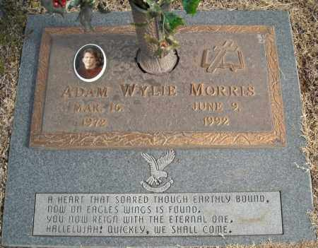 MORRIS, ADAM WYLIE - Faulkner County, Arkansas | ADAM WYLIE MORRIS - Arkansas Gravestone Photos