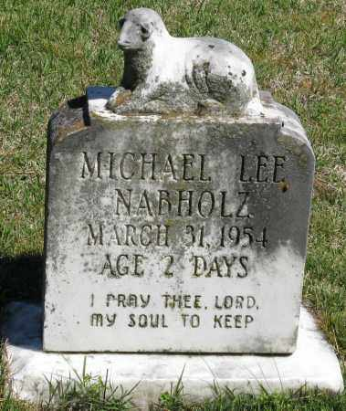 NABHOLZ, MICHAEL LEE - Faulkner County, Arkansas | MICHAEL LEE NABHOLZ - Arkansas Gravestone Photos