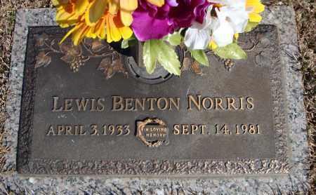 NORRIS, LEWIS BENTON - Faulkner County, Arkansas | LEWIS BENTON NORRIS - Arkansas Gravestone Photos