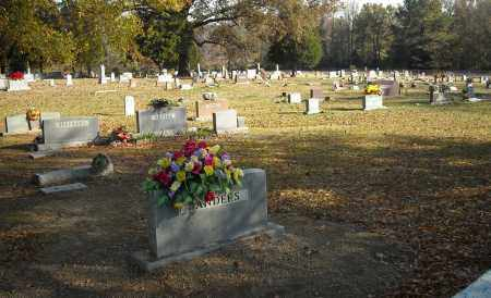 *OAK BOWERY OVERVIEW,  - Faulkner County, Arkansas |  *OAK BOWERY OVERVIEW - Arkansas Gravestone Photos