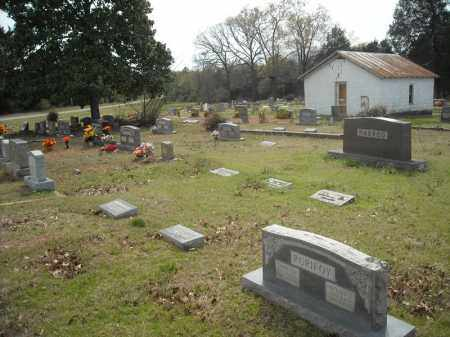 *OAKLAND OVERVIEW 1,  - Faulkner County, Arkansas |  *OAKLAND OVERVIEW 1 - Arkansas Gravestone Photos