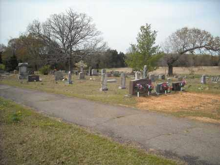 *OAKLAND OVERVIEW 2,  - Faulkner County, Arkansas |  *OAKLAND OVERVIEW 2 - Arkansas Gravestone Photos