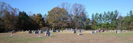 *OLD TEXAS OVERVIEW #2,  - Faulkner County, Arkansas |  *OLD TEXAS OVERVIEW #2 - Arkansas Gravestone Photos