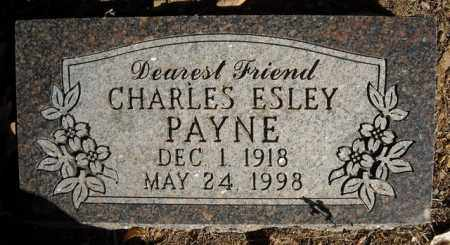 PAYNE, CHARLES ESLEY - Faulkner County, Arkansas | CHARLES ESLEY PAYNE - Arkansas Gravestone Photos