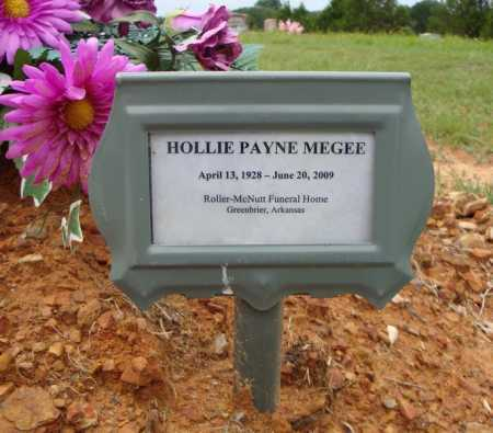 PAYNE, HOLLY J. (TEMPORARY MARKER) - Faulkner County, Arkansas | HOLLY J. (TEMPORARY MARKER) PAYNE - Arkansas Gravestone Photos