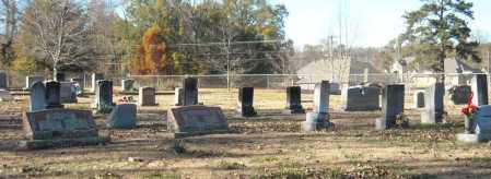 *PEARSON CEMETERY OVERVIEW,  - Faulkner County, Arkansas |  *PEARSON CEMETERY OVERVIEW - Arkansas Gravestone Photos