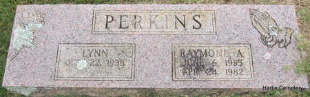 PERKINS, RAYMOND A. - Faulkner County, Arkansas | RAYMOND A. PERKINS - Arkansas Gravestone Photos