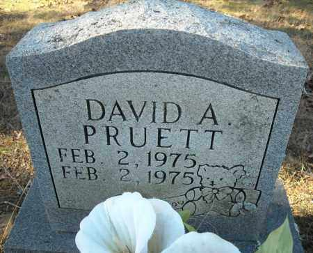 PRUETT, DAVID A. - Faulkner County, Arkansas | DAVID A. PRUETT - Arkansas Gravestone Photos