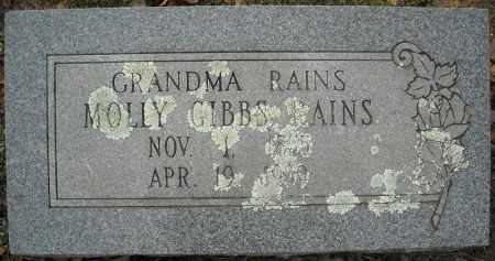 RAINS, MOLLY - Faulkner County, Arkansas | MOLLY RAINS - Arkansas Gravestone Photos