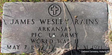 RAINS (VETERAN WWII), JAMES WESLEY - Faulkner County, Arkansas | JAMES WESLEY RAINS (VETERAN WWII) - Arkansas Gravestone Photos