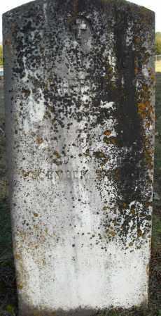 RIFFIE  (VETERAN), JOE MONROE - Faulkner County, Arkansas | JOE MONROE RIFFIE  (VETERAN) - Arkansas Gravestone Photos