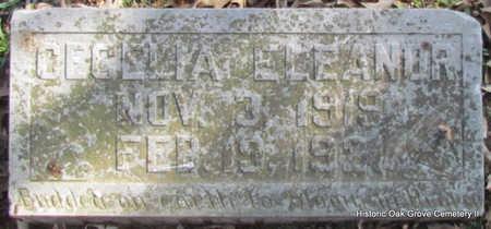 ROBINETTE, CECELIA ELEANOR - Faulkner County, Arkansas | CECELIA ELEANOR ROBINETTE - Arkansas Gravestone Photos