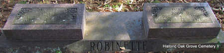 BUSH ROBINETTE, LYDA E. - Faulkner County, Arkansas | LYDA E. BUSH ROBINETTE - Arkansas Gravestone Photos