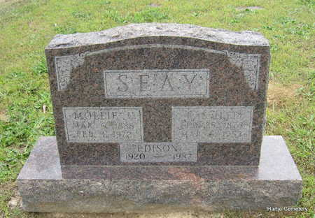 SEAY, MOLLIE L. - Faulkner County, Arkansas | MOLLIE L. SEAY - Arkansas Gravestone Photos