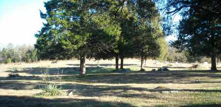 *SINAI CEMETERY OVERVIEW 1,  - Faulkner County, Arkansas |  *SINAI CEMETERY OVERVIEW 1 - Arkansas Gravestone Photos