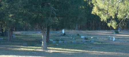 *SINAI CEMETERY OVERVIEW 5,  - Faulkner County, Arkansas |  *SINAI CEMETERY OVERVIEW 5 - Arkansas Gravestone Photos