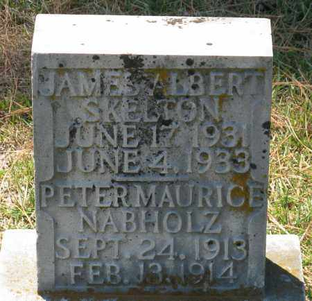 NABHOLZ, PETER MAURICE - Faulkner County, Arkansas | PETER MAURICE NABHOLZ - Arkansas Gravestone Photos