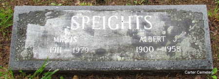 SPEIGHTS, ALBERT J. - Faulkner County, Arkansas | ALBERT J. SPEIGHTS - Arkansas Gravestone Photos