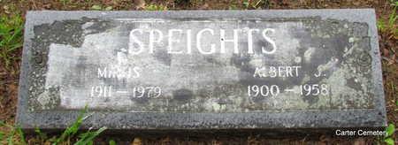SPEIGHTS, MIRTIS - Faulkner County, Arkansas | MIRTIS SPEIGHTS - Arkansas Gravestone Photos