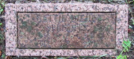 DIEHL SPEIGHTS, NETTIE - Faulkner County, Arkansas | NETTIE DIEHL SPEIGHTS - Arkansas Gravestone Photos