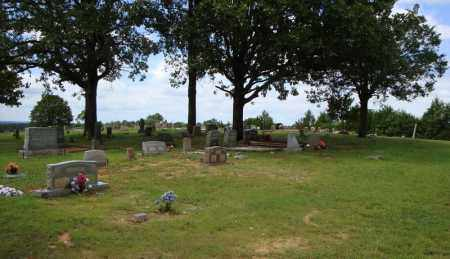 *SPIRES OVERVIEW 2,  - Faulkner County, Arkansas |  *SPIRES OVERVIEW 2 - Arkansas Gravestone Photos