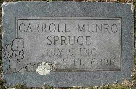 SPRUCE, CARROLL MUNRO - Faulkner County, Arkansas | CARROLL MUNRO SPRUCE - Arkansas Gravestone Photos