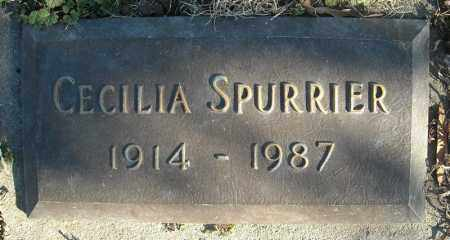 SPURRIER, CECILIA - Faulkner County, Arkansas | CECILIA SPURRIER - Arkansas Gravestone Photos