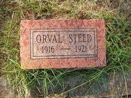 STEED, ORVAL - Faulkner County, Arkansas | ORVAL STEED - Arkansas Gravestone Photos