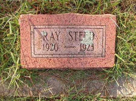 STEED, RAY - Faulkner County, Arkansas | RAY STEED - Arkansas Gravestone Photos