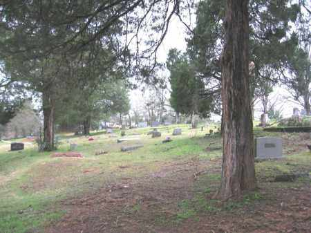 *OVERVIEW,  - Faulkner County, Arkansas |  *OVERVIEW - Arkansas Gravestone Photos
