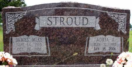 STROUD, JAMES MIKE - Faulkner County, Arkansas | JAMES MIKE STROUD - Arkansas Gravestone Photos