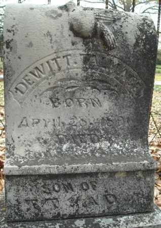 TALMAGES, DEWITT - Faulkner County, Arkansas | DEWITT TALMAGES - Arkansas Gravestone Photos