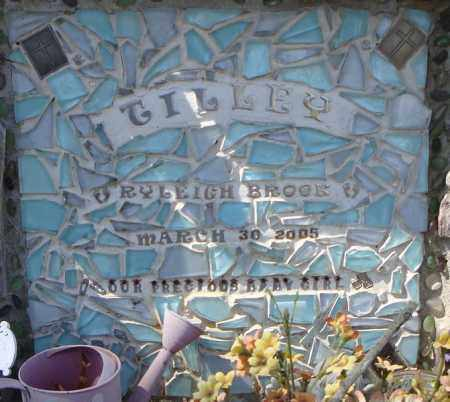 TILLEY, RYLEIGH BROOK  (CLOSE UP) - Faulkner County, Arkansas | RYLEIGH BROOK  (CLOSE UP) TILLEY - Arkansas Gravestone Photos