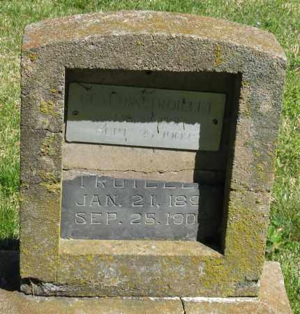 TROILLET, GLAUDIN - Faulkner County, Arkansas | GLAUDIN TROILLET - Arkansas Gravestone Photos