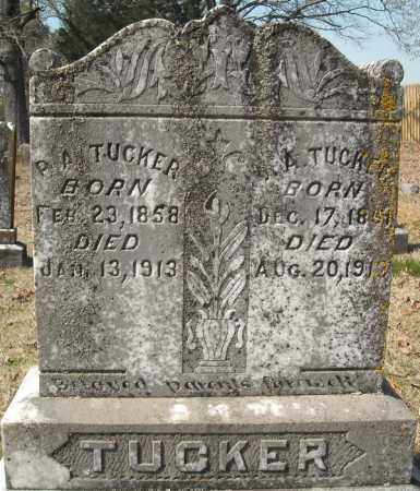 TUCKER, J.A. - Faulkner County, Arkansas | J.A. TUCKER - Arkansas Gravestone Photos