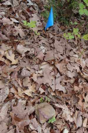 UNKNOWN 18,  - Faulkner County, Arkansas    UNKNOWN 18 - Arkansas Gravestone Photos