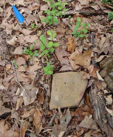 UNKNOWN 06, IDA BELL - Faulkner County, Arkansas | IDA BELL UNKNOWN 06 - Arkansas Gravestone Photos