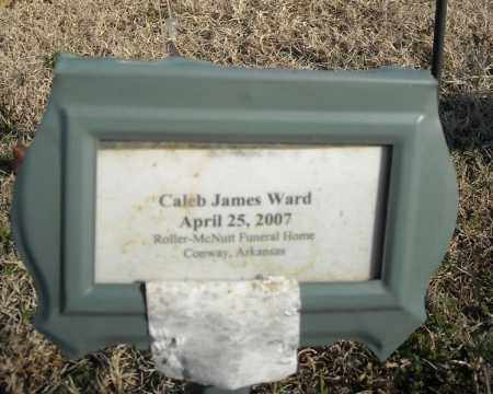 WARD, JAMES CALEB - Faulkner County, Arkansas | JAMES CALEB WARD - Arkansas Gravestone Photos